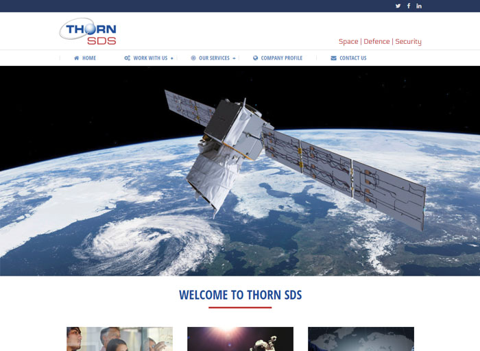 Thorn SDS Web Design